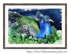 Peacock painting by Dora Hathazi Mendes